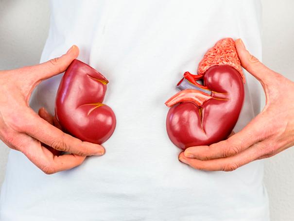 Ultrasonido de riñones